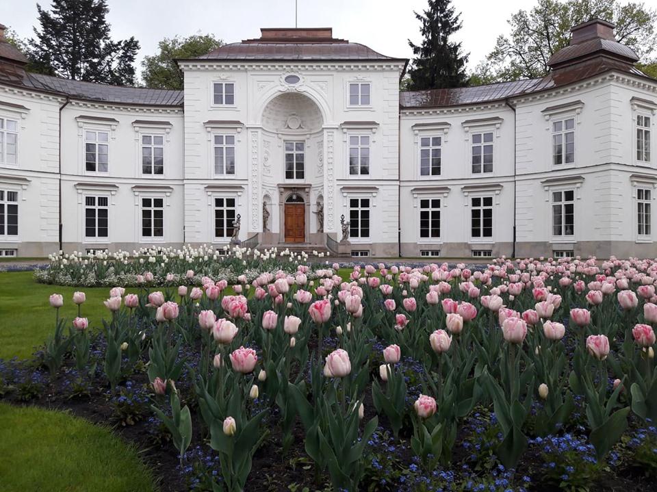 Czy Prezydent Komorowski Odpowie Karnie Za Dewastację Pałacu